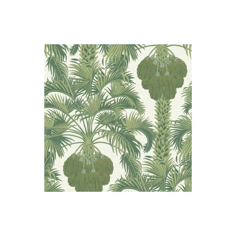113-1004 Hollywood Palm Leaf Green by Cole and Son
